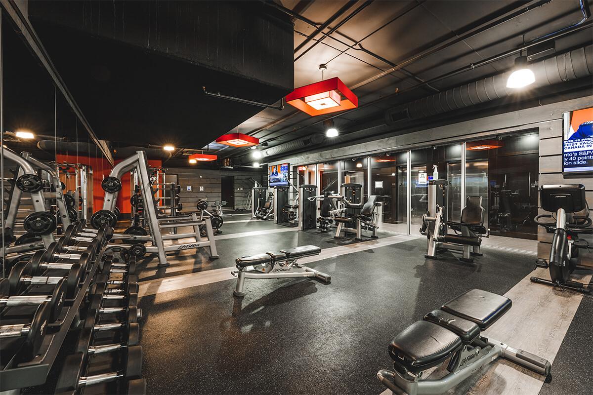 Luxe Weight Room